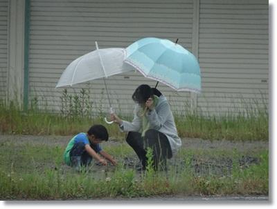 雨の日に思う