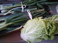 ネギと白菜