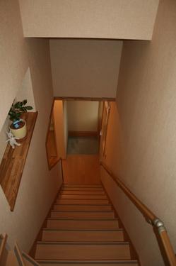 階段のニッチ