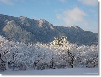 青い空と白い雪