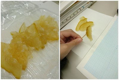 鬼柚子 柚子ピール 砂糖煮